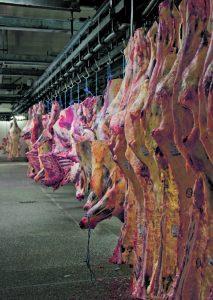 Ab Juli gilt in der deutschen Fleischbranche ein  MINDESTLOHN. Dann soll jeder Arbeiter  mindestens 7,75 Euro brutto die Stunde verdienen. Wie notwendig Kontrollen sein werden, zeigt  diese Geschichte. Denn längst tüfteln Arbeitgeber an Wegen, die Lohnuntergrenze zu umgehen …