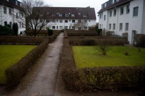 In der Wulffschen Siedlung wird die Art Wohnraum vernichtet, die Hamburg so dringend braucht: 546 kleine, günstige Wohnungen verschwinden in den kommenden zehn bis 15 Jahren – und werden durch 700 größere, teurere ersetzt, von denen nur 90 Sozialwohnungen werden.